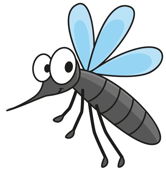 La zanzara le pi belle canzoni per bambini su for Pesci da laghetto mangia zanzare