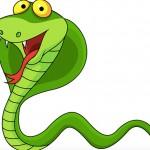 Dialogo fra serpenti