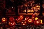 Consigli di sicurezza per Halloween