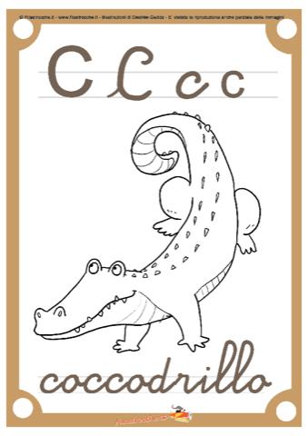 Abbecedario da colorare lettera c stampa disegna e for Coccodrillo da colorare