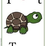 ABC book: Abbecedario inglese: verifica per la Lettera T