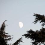 La luna in pieno giorno