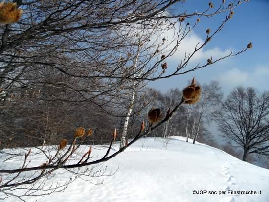 La canzone della neve