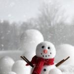 L'inverno e i piccini