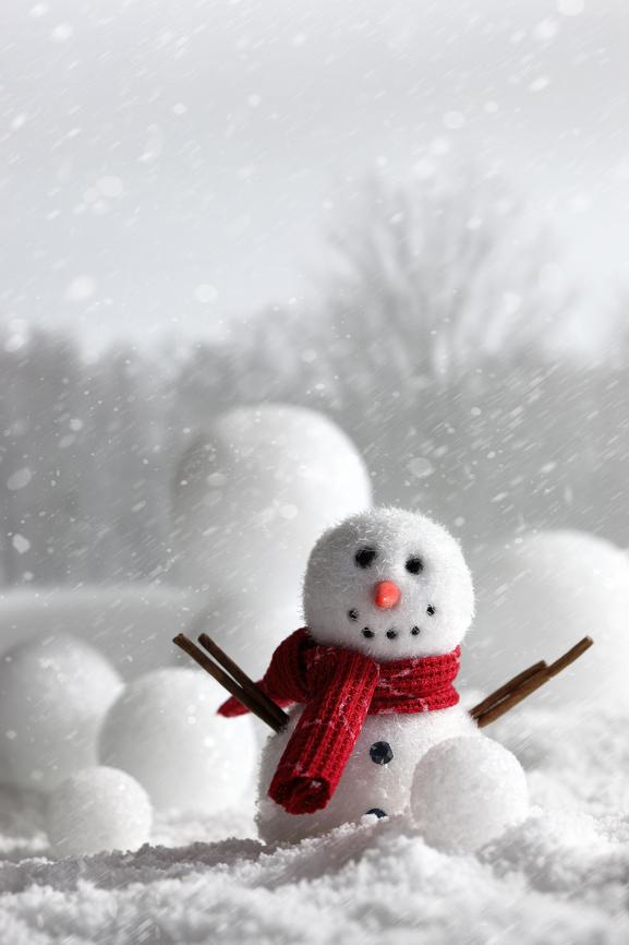 Filastrocca delle nevi