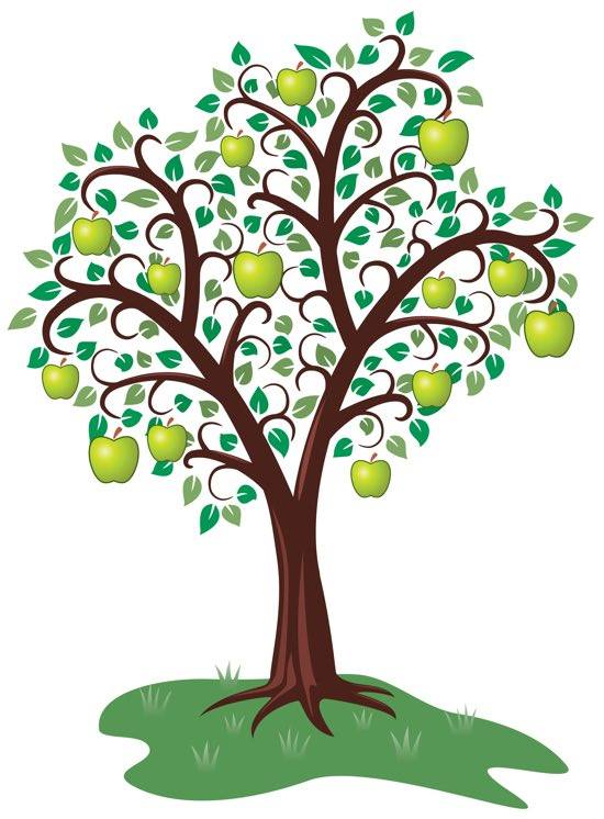 Mi racconto albero
