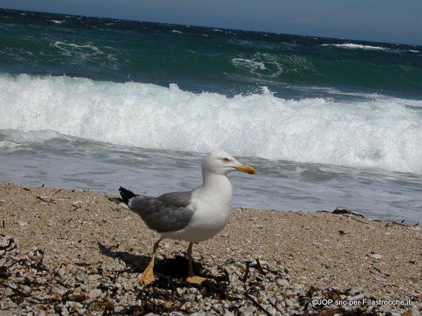 S'ode ancora il mare