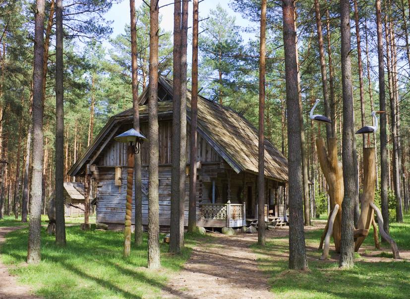Risultati immagini per casa povera bosco
