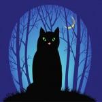 Lo squadrone di gatti neri