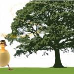 L' uovo di Pasqua e la storia di Zigo