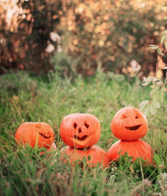 October brings us Hallowe'en