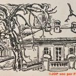 Il vecchio pero e la rondine