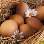 Le uova rotolanti