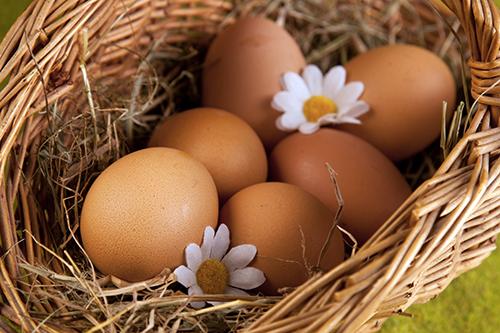 L'aggettivo per l'uovo