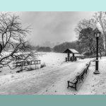 Il cuore dell'inverno
