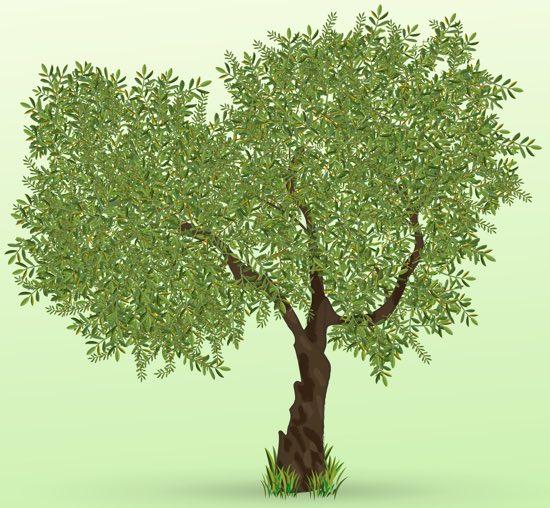 C'è un albero dentro di me