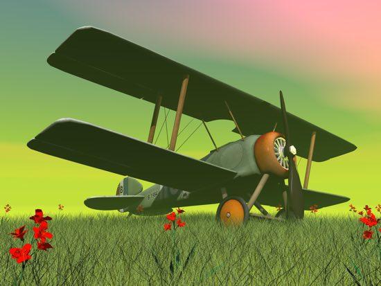 Mio fratello aviatore