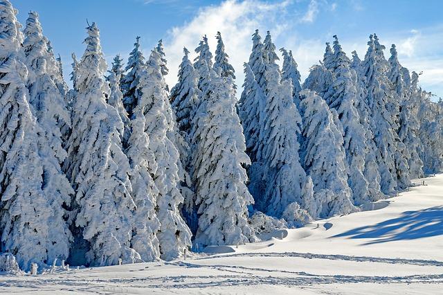Babbo inverno