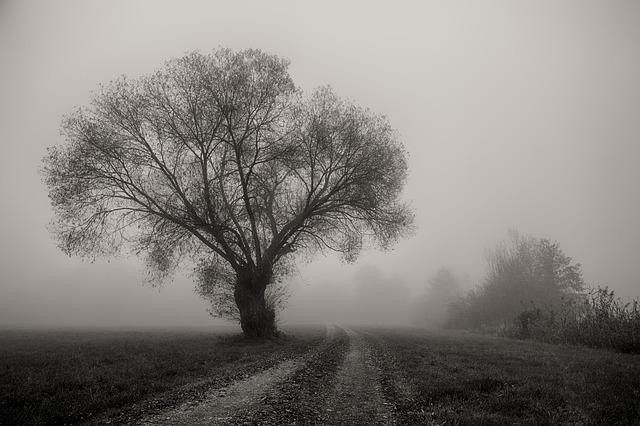 Inverni di provincia