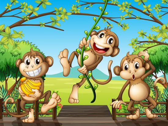 scimmie in viaggio
