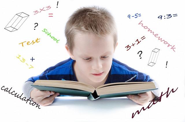 Il diritto di imparare
