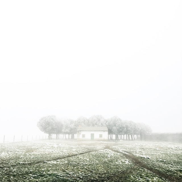 Effetto di nebbia