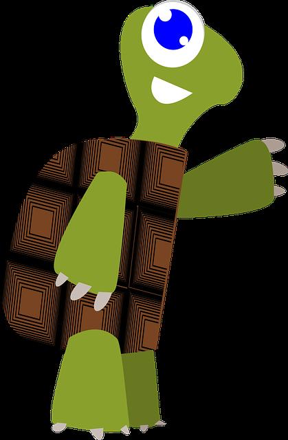 La tartartaruga
