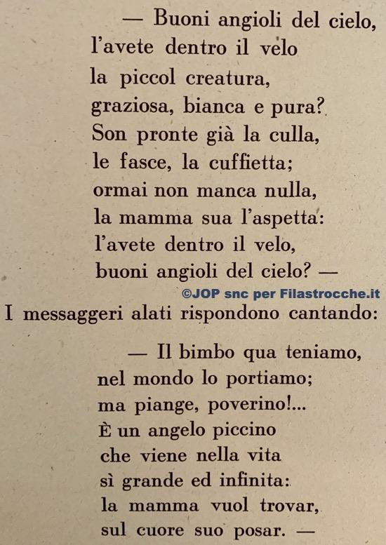 Angelo piccino