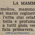 La mammola