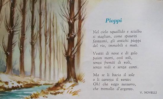 Pioppi