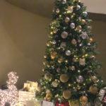 Filastrocca degli alberi di Natale