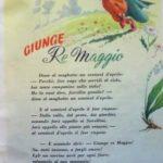 Giunge Re Maggio