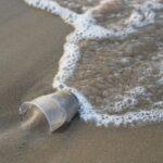 Filastrocca del mare pulito