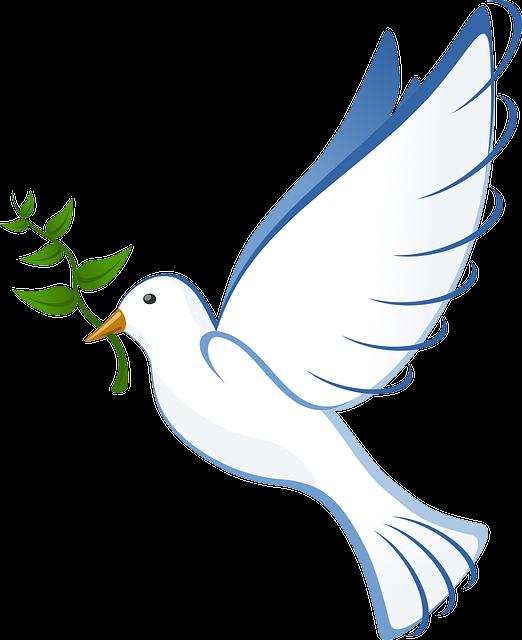 La Pace che cos'è?