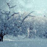 L'inverno a bordo di un veliero