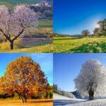 La danza delle stagioni