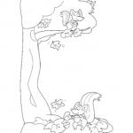 Disegno da colorare – Scoiattoli