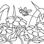 Colora con Crayola! L'ape che vola sui fiori