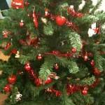 Cena della vigilia: tradizioni culinarie natalizie