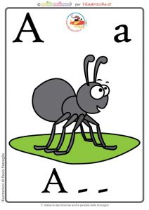 A-ANT-guess-web