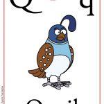 Schede alfabeto inglese da stampare: lettera Q