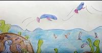 I pesci volanti