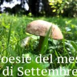 Poesie del mese di Settembre