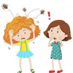 Le 5 mosse da fare quando a scuola scatta l'allarme pidocchi