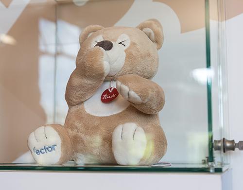 Ector The Protector Bear