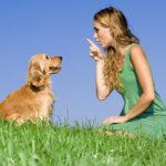 Come parlare con il cane: Gli errori da non fare