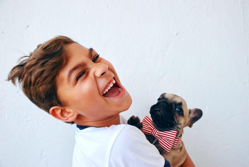 Cane per amico